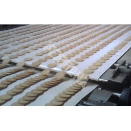 Clina Conveyor belt for the food industry